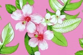 PAB0870 Pink