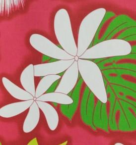 PAA1114 Pink
