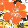 PAB0874_Orange_ZZ