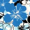 PAB0874_Turquoise_ZZ