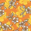 PAB0878_Orange_Z