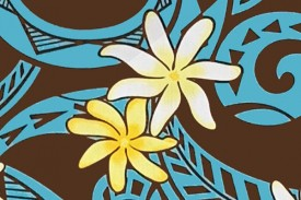 PAC1384 Brown Turquoise