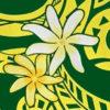PAC1383_Green_ZZ