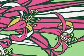 PBB2640 Green Pink