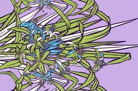 PBB2640_LavenderGreen