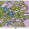 PBB2640_LavenderGreen_1