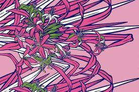 PBB2640_Pink