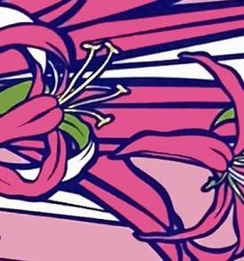 PBB2640 Pink