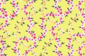 CAA0932_Yellow