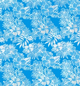 HRC0003_Blue