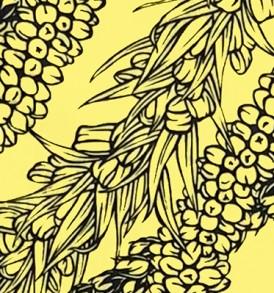 PBC0641 Mustard