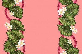 CBB0210_Pink