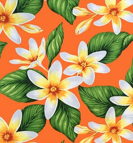 PAA1265_Orange