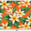 PAA1265_Orange_1