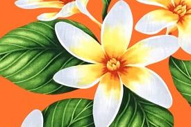 PAA1265 Orange