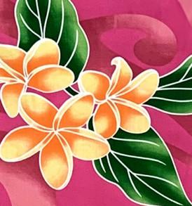 PAB0876 Fuchsia