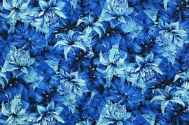 PAB0889_Blue