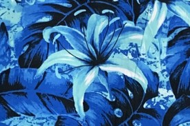 PAB0889 Blue