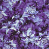 PAB0889_Purple_Z