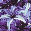 PAB0889_Purple_ZZ