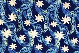 PAC1385_Blue