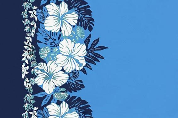 PBB2644_Blue