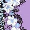 PBB2644_Lavender_Z