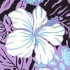 PBB2644_Lavender_ZZ