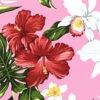 CAA0947_Pink_ZZ