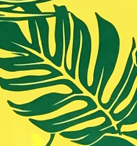 PAB0896 Green Yellow