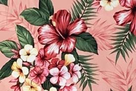 CAA0960 Pink