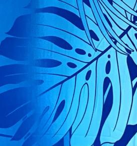 HR1508 Blue