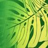 HR1508_Green_ZZ