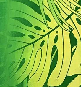 HR1508 Green