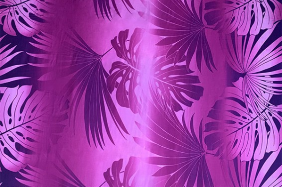 HR1508_Purple