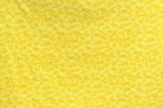 JP2440_Yellow