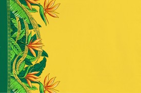 PBB2647_Yellow