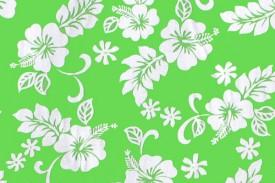 CAA0898 Lime