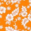 CAA0898_Orange_ZZ