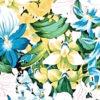 CAA0968_Turquoise_ZZ