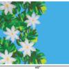 PBB2650_Turquoise_1