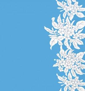 PBB2652_Turquoise