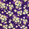 CAA0975_Purple_Z