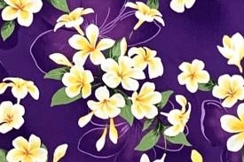 CAA0975 Purple