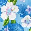 CAA0976_Blue_ZZ