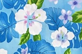 CAA0976 Blue