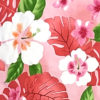 CAA0976_Pink_ZZ