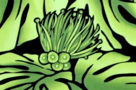 PAB0904 Black Green