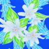 PAB0909_Blue_ZZ