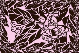 PBB2656 Brown Pink